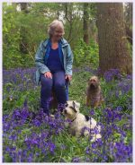 Jane in the bluebell woods with Molly and Ruby